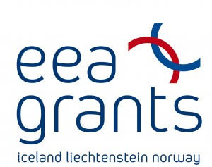 eea grants big